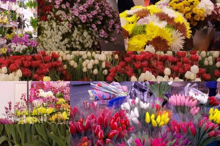 Цветочная Ярмарка в Феодосии