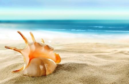 В Феодосии объявлен конкурс по благоустройству пляжей
