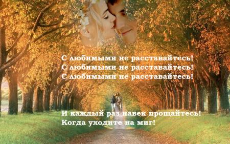 В Феодосии стартовала акция «С любимыми не расставайтесь»