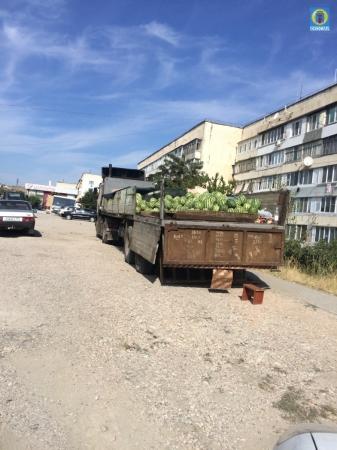 В Феодосии пытались незаконно реализовать 7 тонн арбузов