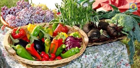 Вниманию сельскохозяйственных производителей региона!
