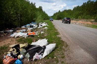 Уборка дорог и обочин с мая должна проводиться еженедельно – Аксёнов