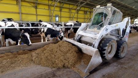 Крымские фермеры получили гранты на развитие своих хозяйств на 92 млн руб