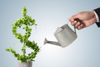 Начинается прием документов на конкурсный отбор по предоставлению грантов начинающим субъектам малого предпринимательства