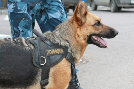 22 нераскрытые кражи в Феодосии