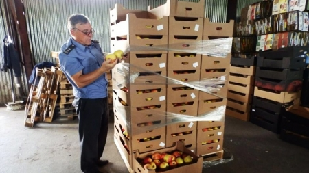 Россельхознадзор не пропустил за неделю из Украины в Крым 150 кг подкарантинных товаров