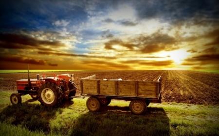 Более 100 инвестпроектов в рамках крымской СЭЗ реализуется в сфере сельского хозяйства