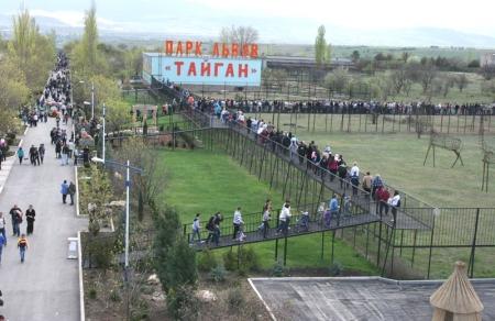 Крымские зоопарки «Сказка» и «Тайган» находятся на грани закрытия